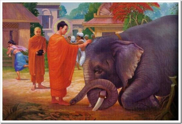 Từ bi là căn bản của đạo Phật