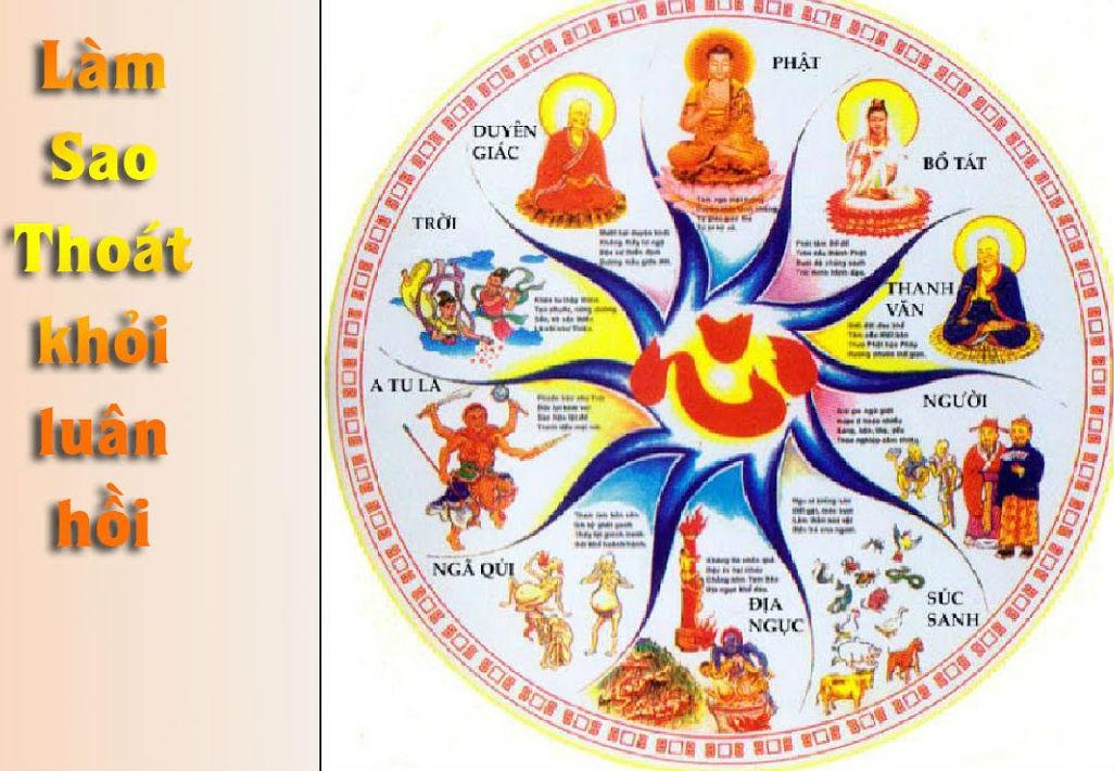 Bước Đầu Học Phật - 8. Luân Hồi