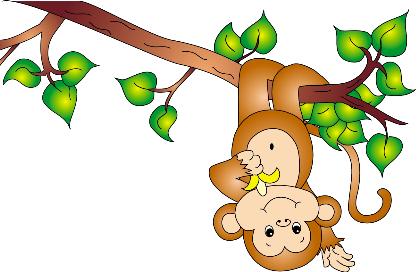 Cái bẫy khỉ nguyên nhân của khổ đau