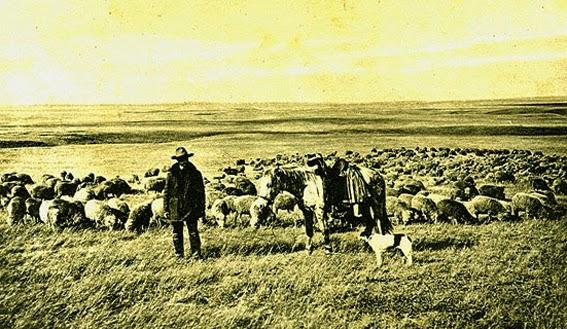 Đối thoại giữa đức Phật và gã chăn cừu