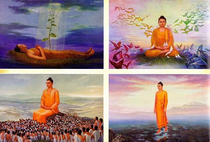 Giáo dục của nhà Phật về vấn đề ăn chay với việc bảo vệ môi trường
