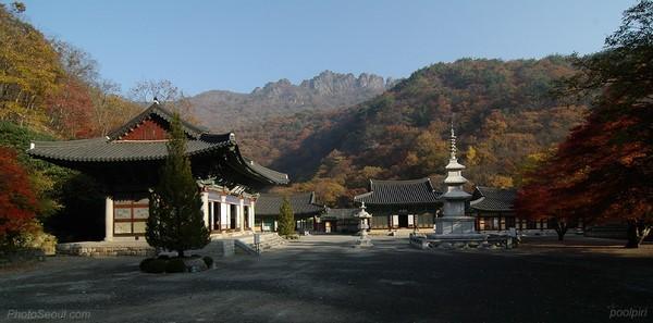 Hàn Quốc: Khám phá ngôi cổ tự Naejangsa