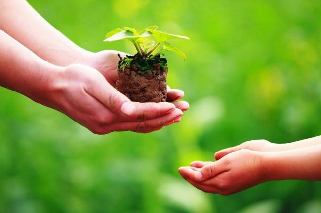 Lợi ích từ việc tích lũy phước đức