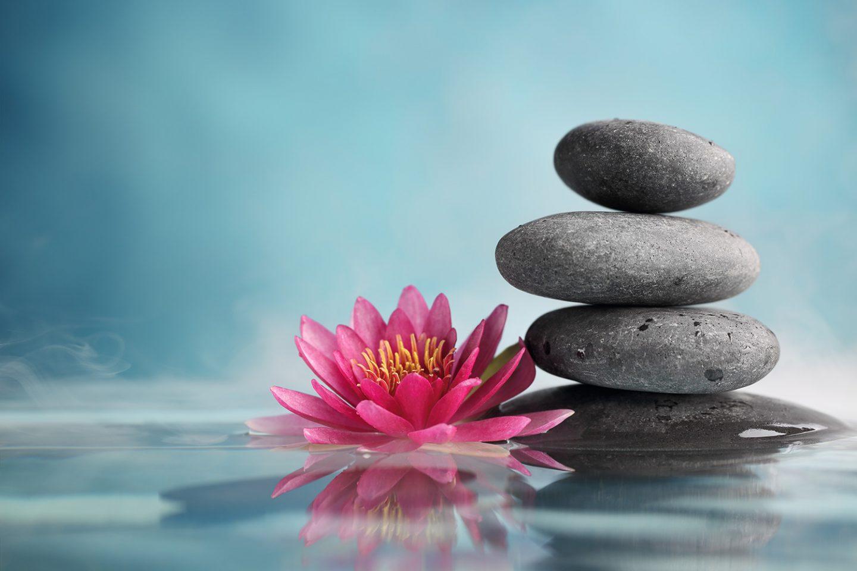 Phật giáo Nguyên Thủy và Phật giáo Đại Thừa
