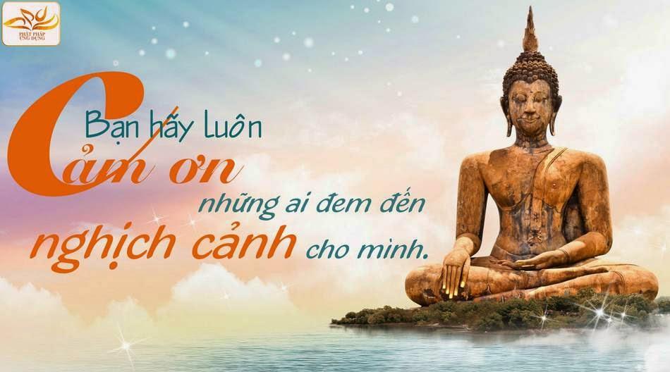 Suy ngẫm về cuộc sống