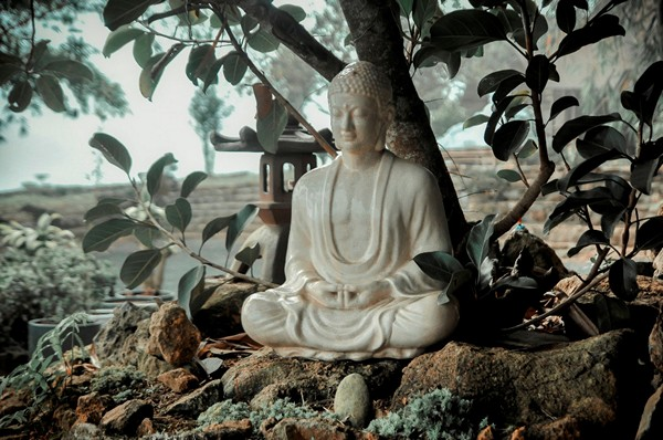 Tâm và Thiền trong đời sống hằng ngày