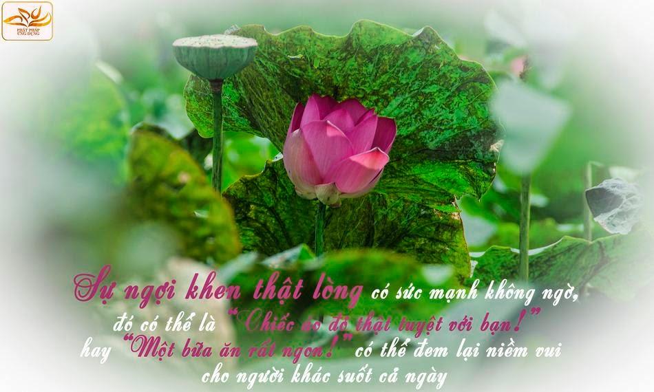 Thơ, hoa và nụ cười (Phần 01)