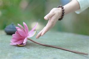 Xử lý vấn đề tình cảm trong Phật giáo