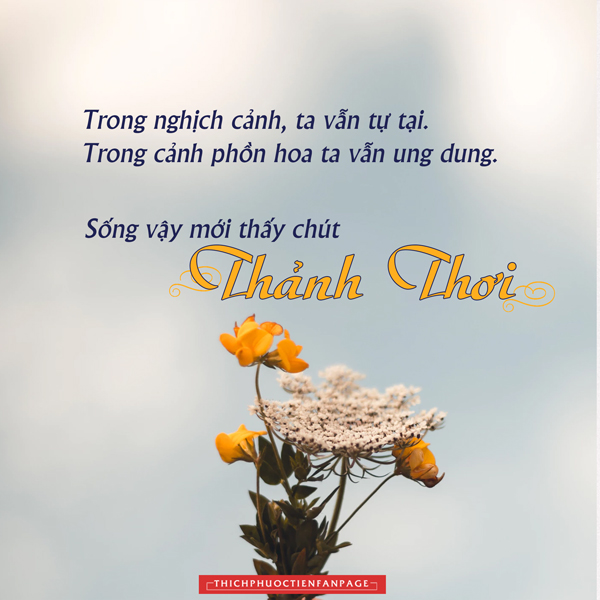 song thanh thoi