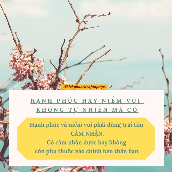hanh phuc khong tu nhien ma co
