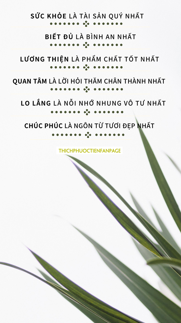 7 dieu trong cuoc song can nho